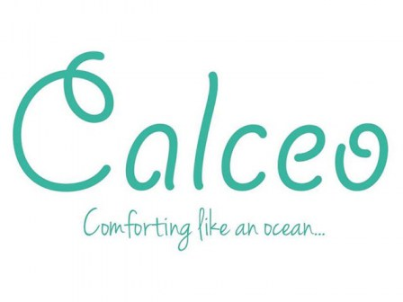 calceo-logo